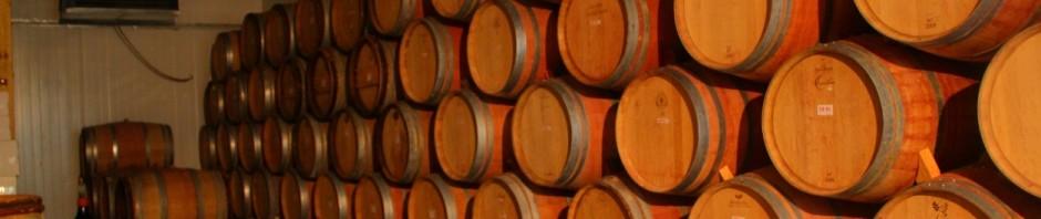 Hans Sternbach Winery_Weinkeller