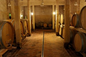 the newly built cellar *